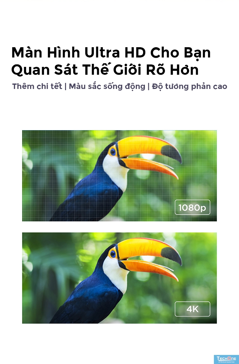 Tivi Xiaomi 4A 65 inch