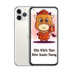 Điện Thoại IPhone 11 Pro Max 64GB Lock (1 Sim Vật Lý)