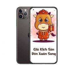 Điện Thoại IPhone 11 Pro Max 256GB 99% (1 Sim Vật Lý) – Chính Hãng