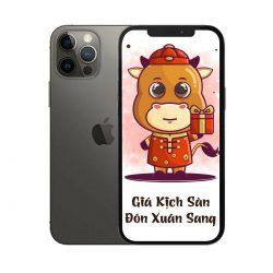 Điện thoại iPhone 12 Pro 128GB - (1 sim Vật lý) - Chính Hãng